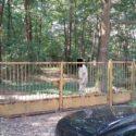 Sokolniki-Las- Sprzedam bezpośrednio działkę leśno-budowlaną o pow.1883 m2